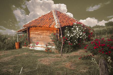 RomanticPhoto