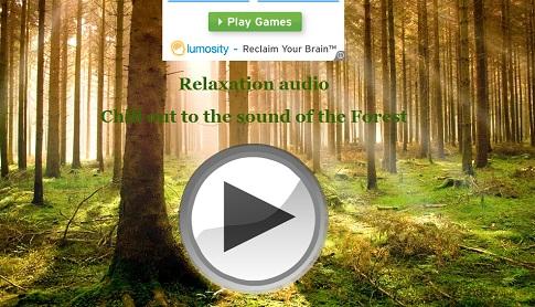 森の中にいるような気分に浸れる「Forest Mood」