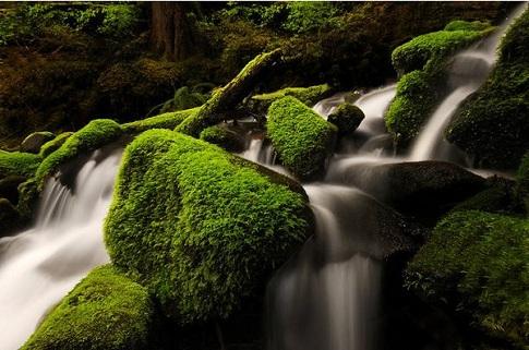 水に関連する綺麗な写真100枚