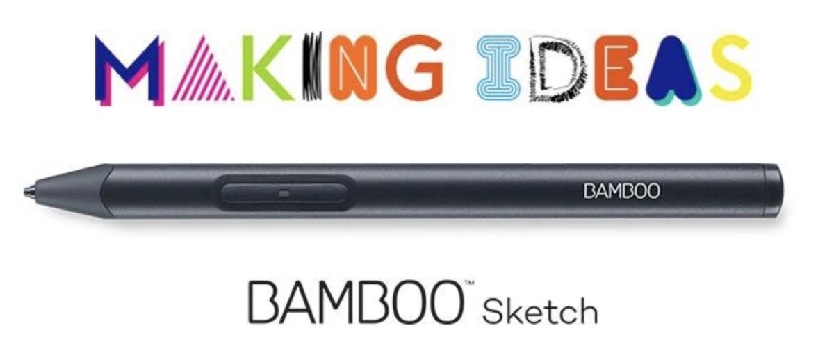 Bamboo Sketch