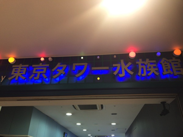 今月で閉館となる約900種類の生物が見れる東京タワー水族館に行ってきた